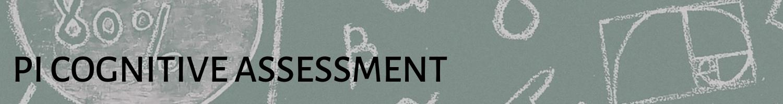 PI Cognitive Assessment